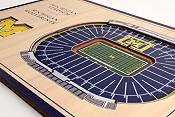 You the Fan Michigan Wolverines Stadium Views Desktop 3D Picture product image
