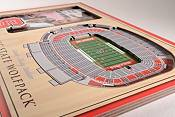 You the Fan NC State Wolfpack Stadium Views Desktop 3D Picture product image