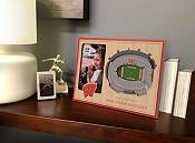 You the Fan Wisconsin Badgers 3D Picture Frame product image
