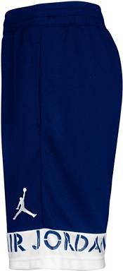 Jordan Boys' Jumpman Air GFX Basketball Shorts product image