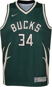 Nike Youth Milwaukee Bucks 2021 Earned Edition Giannis Antetokounmpo  Dri-FIT Swingman Jersey product image