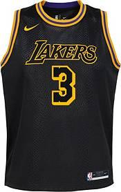 Nike Youth Los Angeles Lakers Anthony Davis Mamba Jersey product image