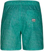 Hurley Men's Heather Volley Board Shorts product image