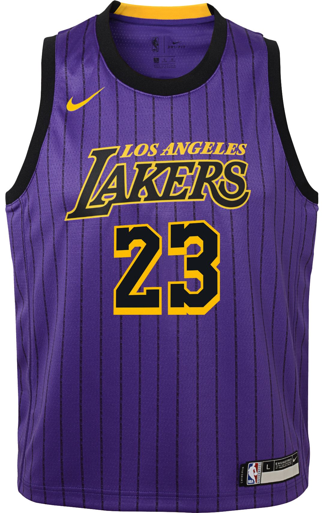 size 40 013c2 e7be2 Nike Youth Los Angeles Lakers LeBron James Dri-FIT Purple City Edition  Swingman Jersey