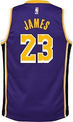 more photos 6e4fd fcf47 Nike Youth Los Angeles Lakers LeBron James Dri-FIT Purple Swingman Jersey
