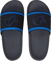 Nike Men's Offcourt Lions Slides product image