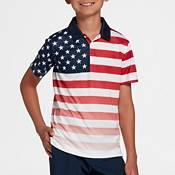 DSG Boys' Literal Flag Polo Shirt product image