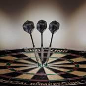 Elkadart Wizard Steel Tip Darts product image
