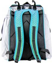 RIP-IT Gameday Fastpitch Bat Pack product image