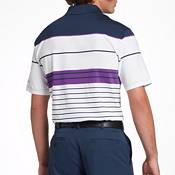 Walter Hagen Men's 11 Majors Stripe Golf Polo- Big & Tall product image