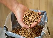 Camp Chef Hickory Premium Hardwood Pellets 20 lbs. product image