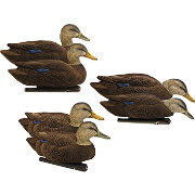 Avian-X Topflight Black Duck Decoy – 6 Pack
