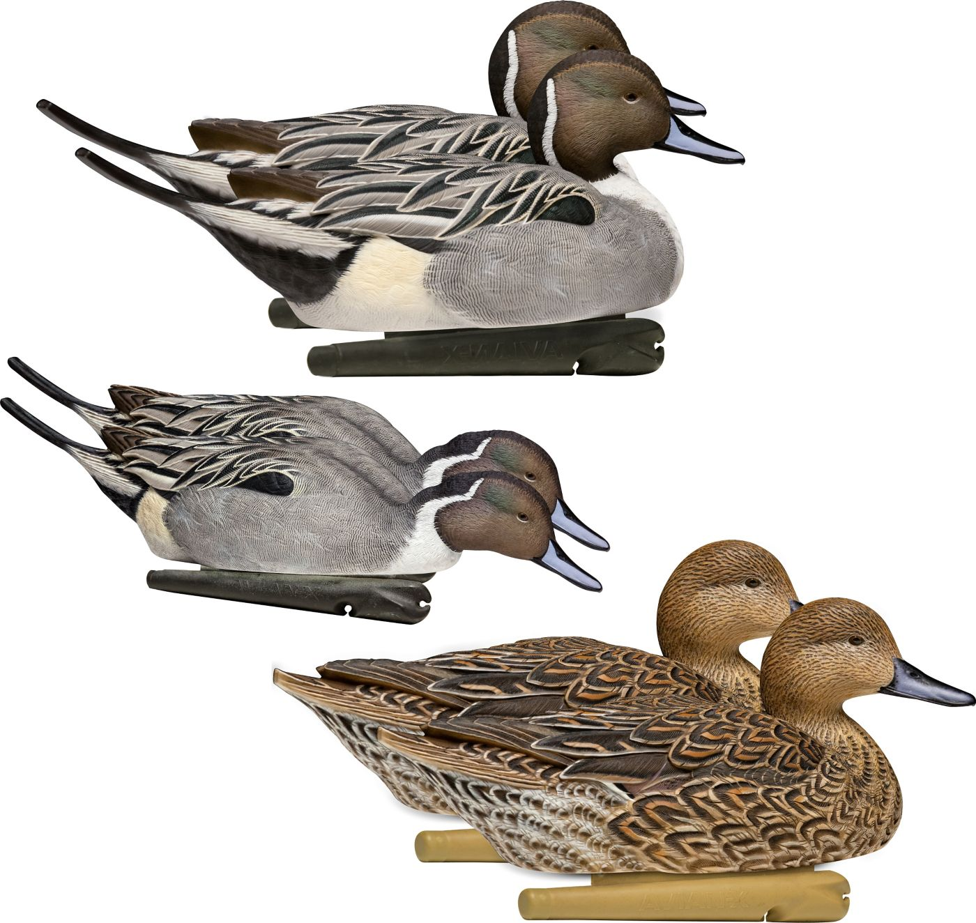 Avian-X Topflight Pintail Decoys - 6 Pack