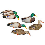 Avian-X AXP Fully Body Mallard Duck Decoy – 6 Pack