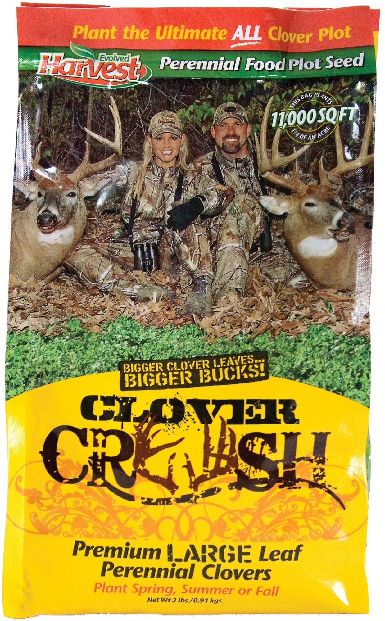 Evolved Harvest Clover Crush Food Plot Seed
