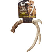 Moore Outdoor Productions Extra Large Real Whitetail Shed Antler