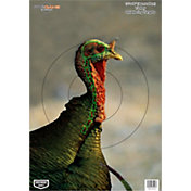 image regarding Turkey Target Printable identified as Turkey Ambitions Great Rate Assure at DICKS