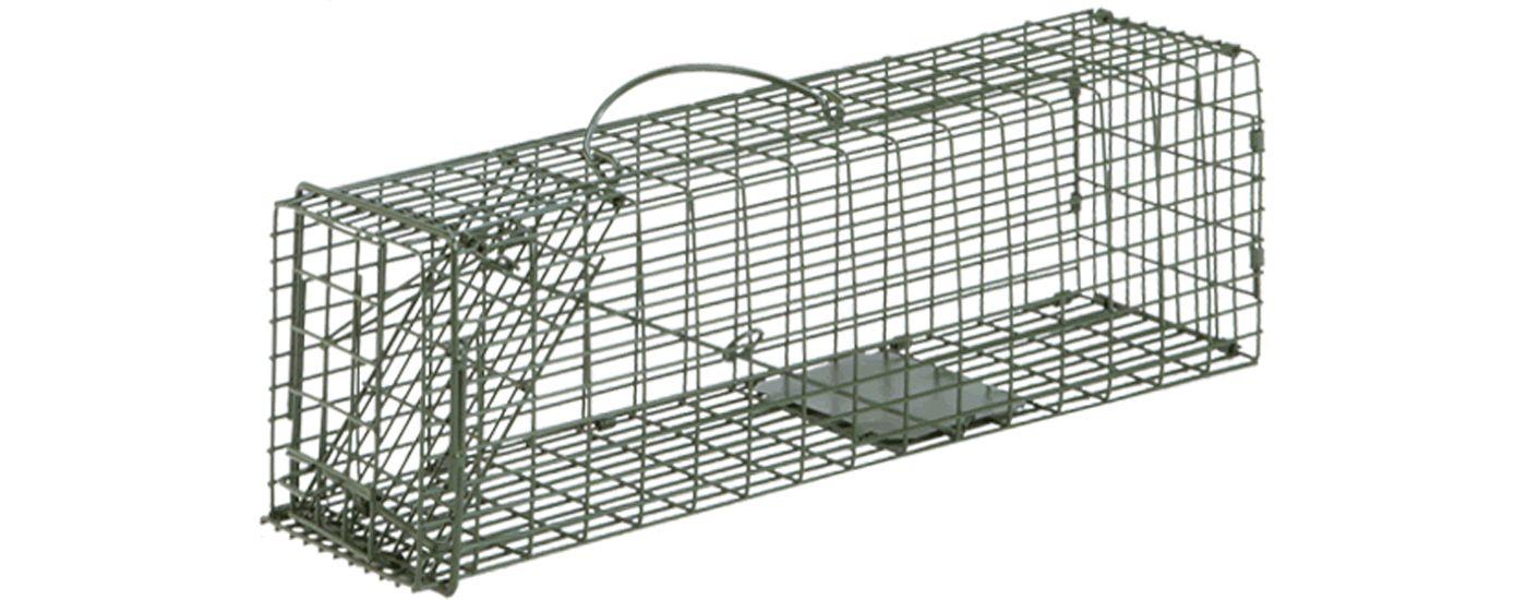Duke #1 Single Door Cage Trap