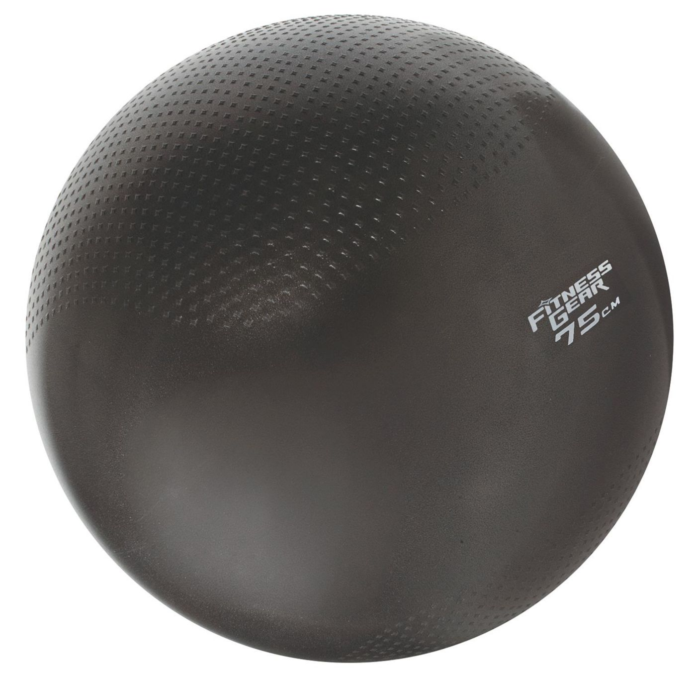 Fitness Gear 75 cm Weighted Stability Ball