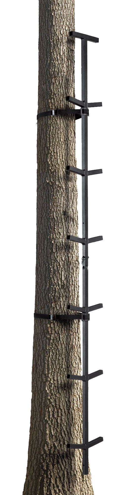 Field & Stream 20-Foot Climbing Sticks thumbnail
