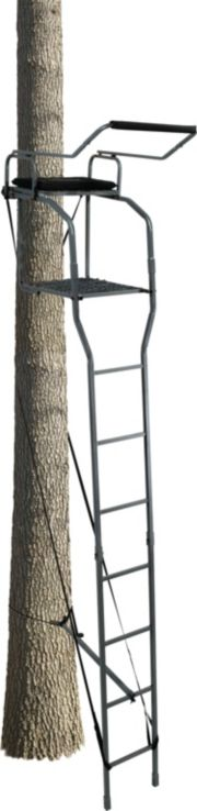Field Amp Stream Lookout Deluxe 16 Ladder Stand Dick S