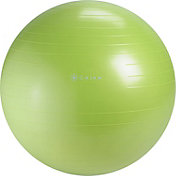 Gaiam Restore 65 cm Strong Back Stability Ball Kit