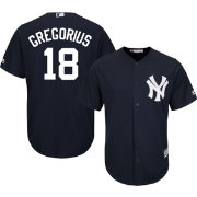 Majestic Men's Replica New York Yankees Didi Gregorius #18 Cool Base Alternate Navy Jersey