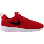 a8c8b9420dd0a Nike Men s Roshe One Shoes