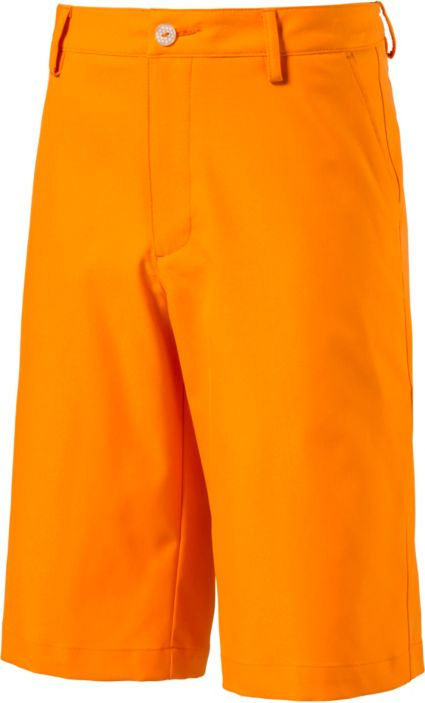 PUMA Boys' Jr. Pounce Shorts
