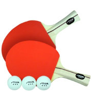 Stiga Master Series Performance 2-Player Indoor Table Tennis Set