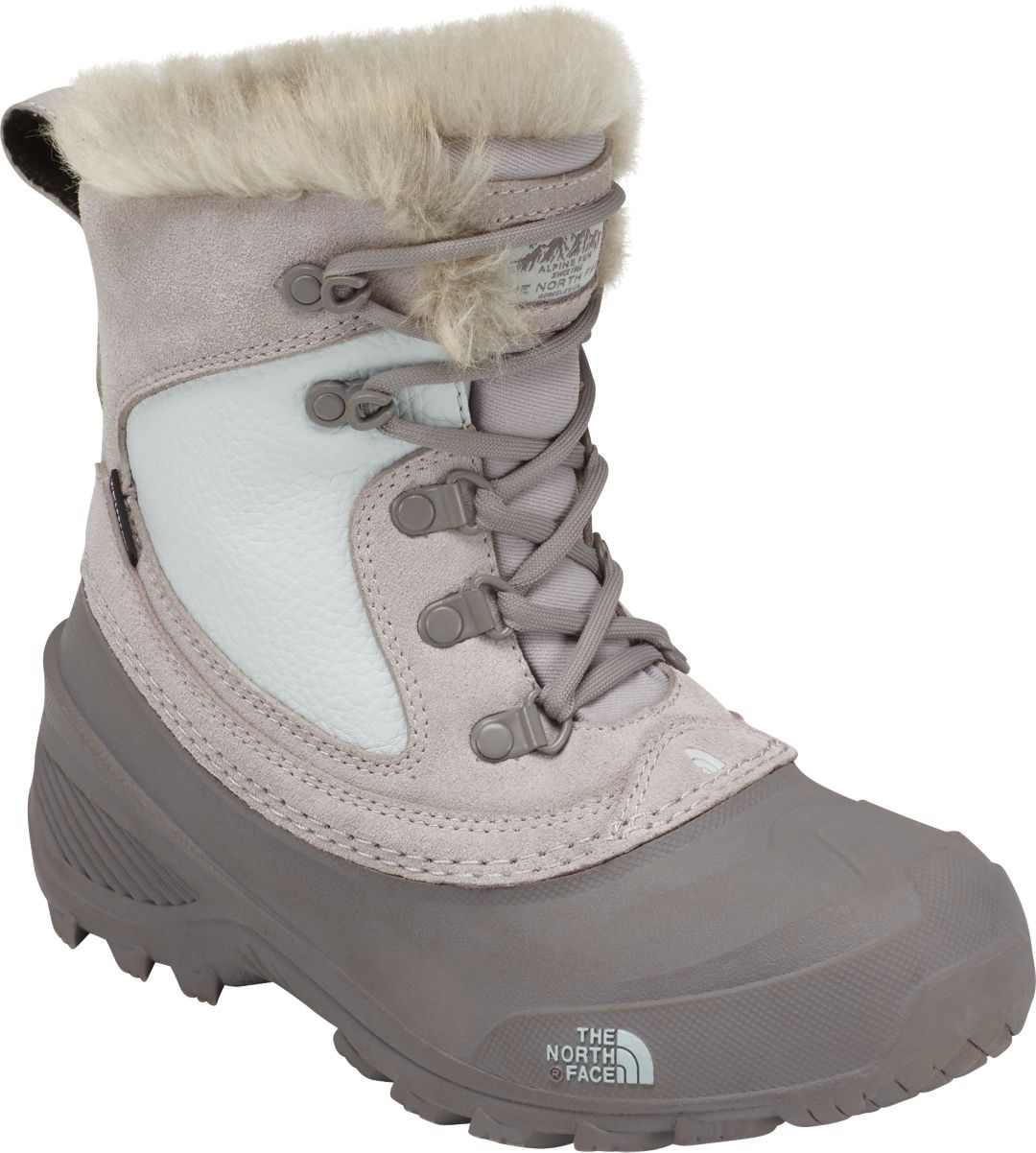82358d769 The North Face Kids' Shellista Extreme 200g Waterproof Winter Boots