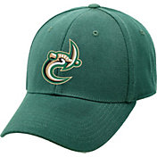 Top of the World Men's Charlotte 49ers Green Premium Collection M-Fit Hat
