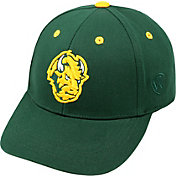 Top of the World Youth North Dakota State Bison Green Rookie Hat