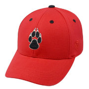 Top of the World Youth New Mexico Lobos Cherry Rookie Hat