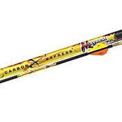 Carbon Express Mayhem 350 Arrows