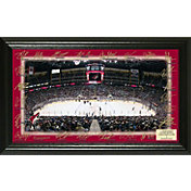 Highland Mint Arizona Coyotes 2017 Signature Rink