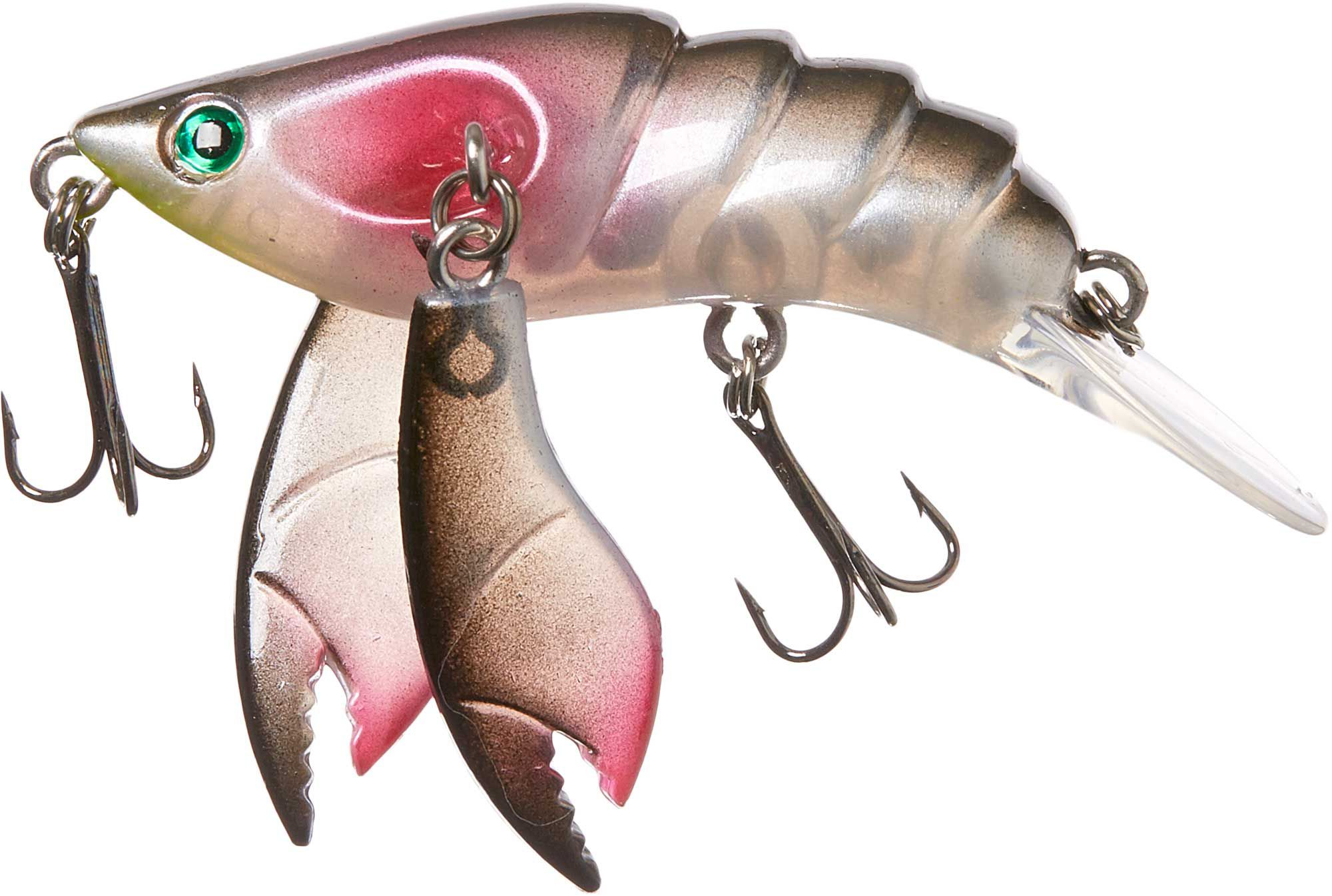 Lure from 3 months: start or wait