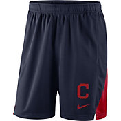 Nike Men's Cleveland Indians Franchise Knit Shorts