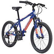 Nishiki Boys' Pueblo 20'' Mountain Bike
