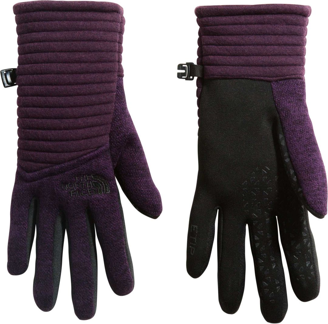 4367b1c31 The North Face Women's Indi Etip Gloves