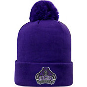 Top of the World Men's Central Arkansas Bears  Grey Pom Knit Beanie