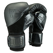 TITLE Boxing Blitz Sparring Gloves