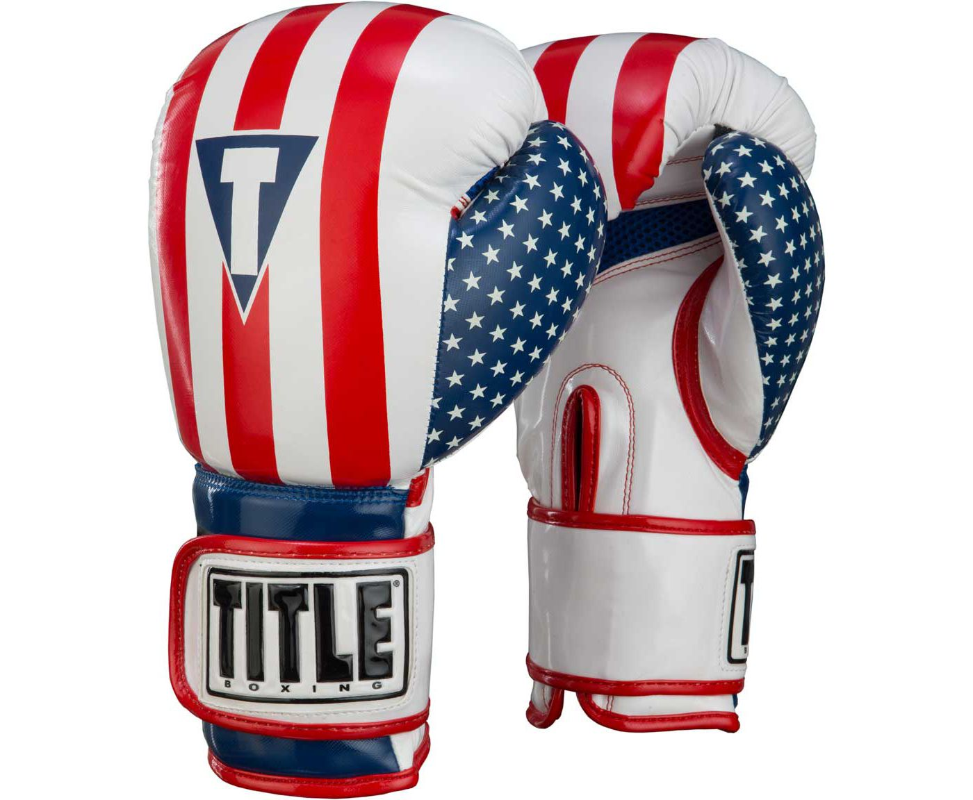 TITLE Boxing Infused Foam Combat USA Training Gloves