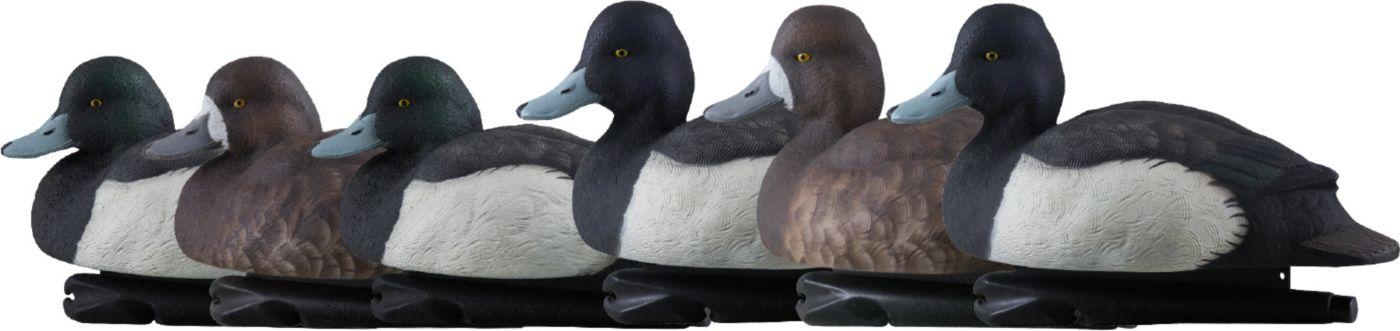 Avian Topflight Bluebill 6 Pack