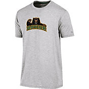 Champion Men's Baylor Bears Grey Crew Performance T-Shirt