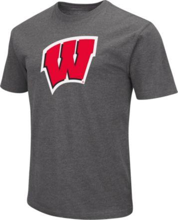 0642de1a Under Armour Men's Wisconsin Badgers Grey Tech Performance T-Shirt. $32.00.  Colosseum Men's Wisconsin Badgers Grey Dual Blend ...