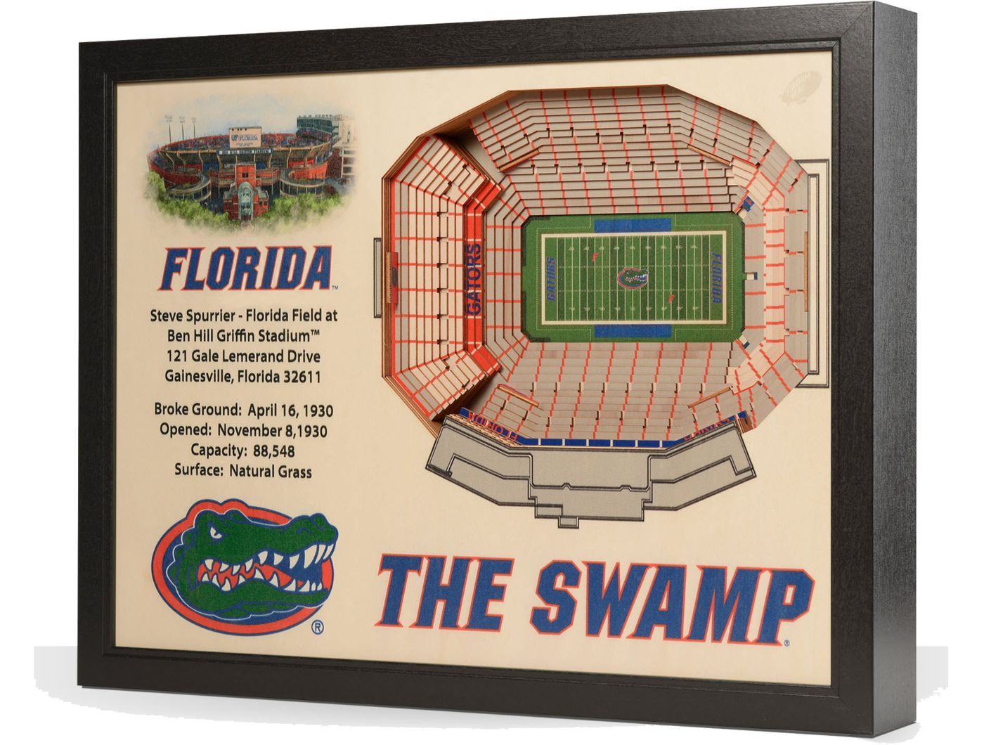 You the Fan Florida Gators 25-Layer StadiumViews 3D Wall Art