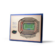 You the Fan Florida Gators 5-Layer StadiumViews 3D Wall Art