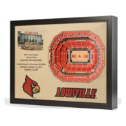 You the Fan Louisville Cardinals 25-Layer StadiumViews 3D Wall Art