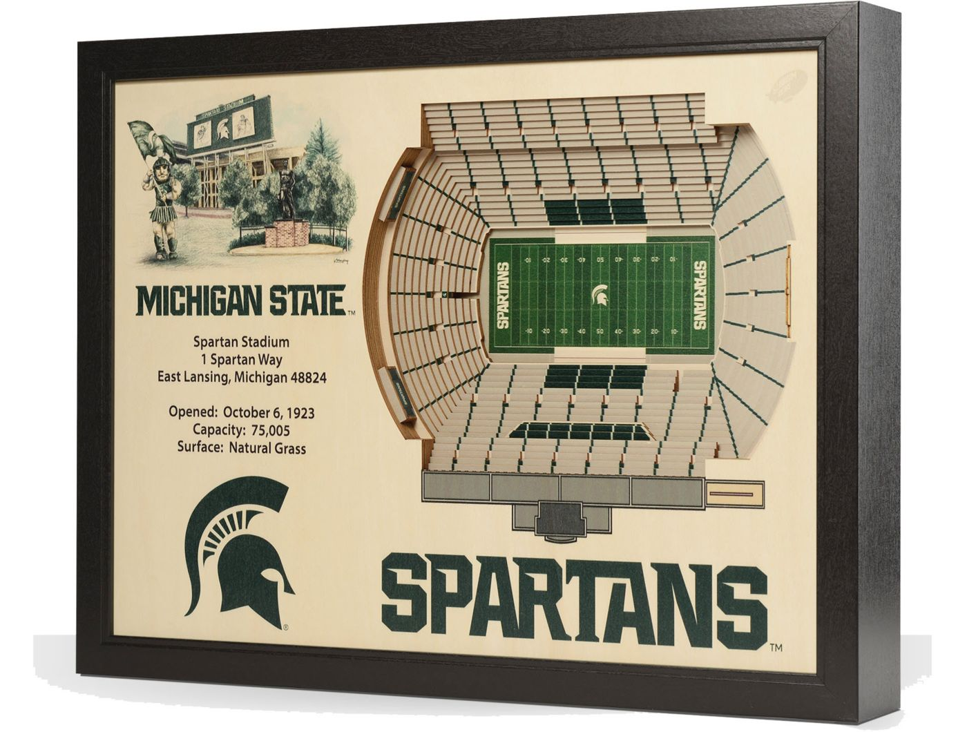 You the Fan Michigan State Spartans 25-Layer StadiumViews 3D Wall Art